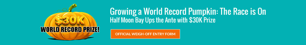 Growing a World Record Pumpkin: The Race is On - Half Moon Bay Ups the Ante with $30K Prize - Click for Official Weigh-Off Entry Form