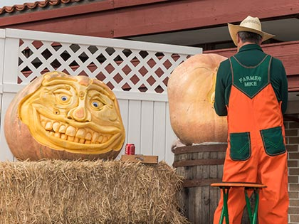 Farmer Mike, Carving Expert