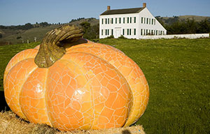 Half Moon Bay's Great Pumpkin - the world's largest pumpkin sculpture by artist Peter Hazel