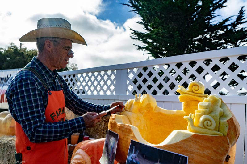 Farmer Mike carving pumpkin