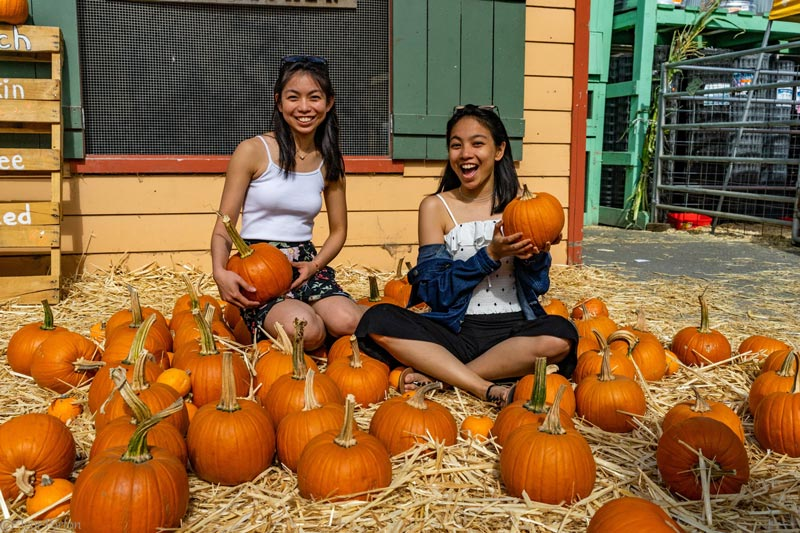 young women in pumpkin patch