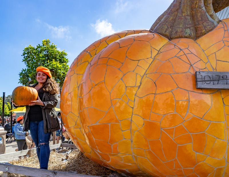 photos with world's largest pumpkin statue